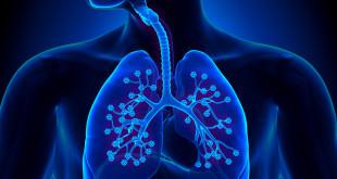 Medicinski preokret: otkrivena važna nova funkcija pluća