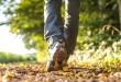 Žustra svakodnevna šetnja može produljiti život za 7 godina!