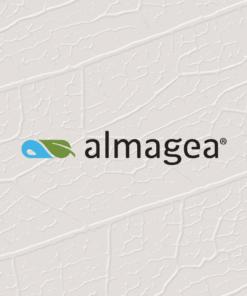 Almagea
